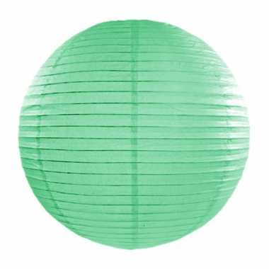 Camping  Bol lampion mint groen 35 cm kopen