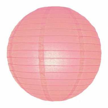 Camping  Bol lampionnen roze 25 cm kopen
