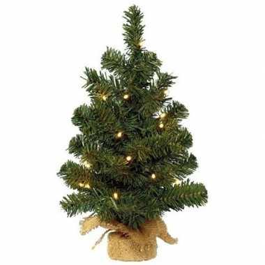Camping kerstmis nep dennenboompje 45 cm met 20 lampjes warm wit kope