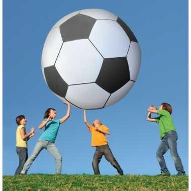 Camping  Opblaasbare voetbal 180 cm kopen