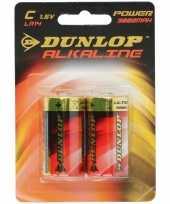Camping dunlop 1 5 volt batterijen 2 stuks kopen
