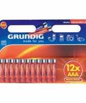 Camping grundig batterijen aaa pakket 12 stuks kopen